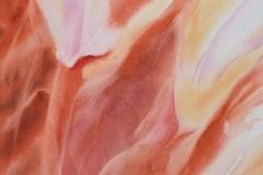borduas-watercolor-flower2