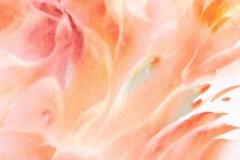 borduas-watercolor-flower4
